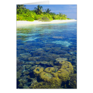 Tropical Coral Island Card