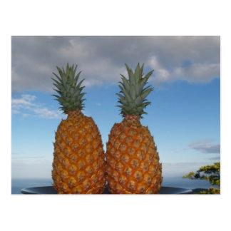 Tropical Couple Postcard