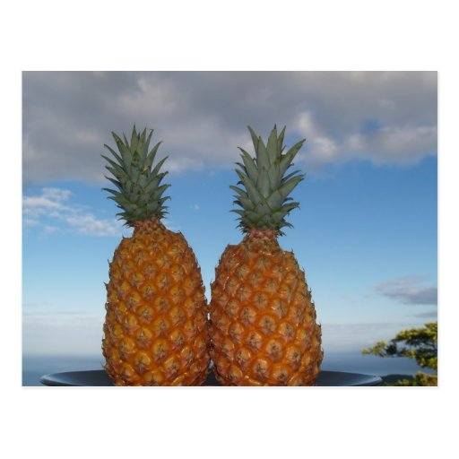 Tropical Couple Post Cards
