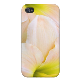 Tropical Daylily iPhone Cases Cover For iPhone 4