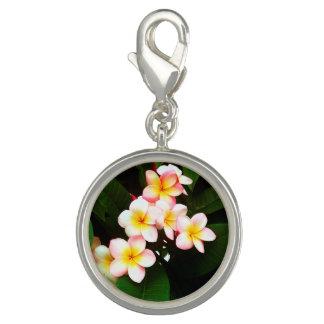 Tropical Exotic Frangipani Flower Photo Charms