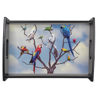 Tropical exotic parrots sitting on the tree serving tray