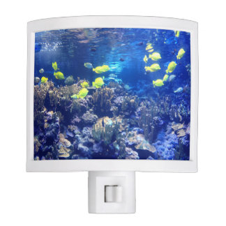 Tropical Fish Aquarium night light