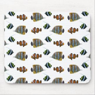 Tropical Fish Frenzy Mousemat (choose colour) Mouse Pad