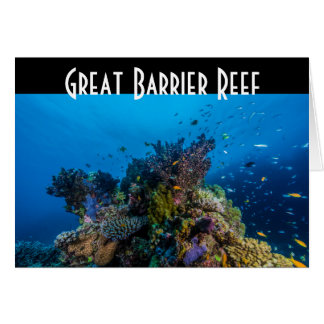 Tropical Fish Great Barrier Reef Coral Sea Card
