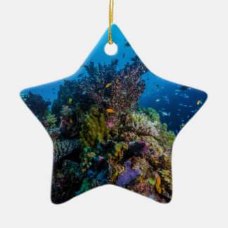 Tropical Fish Great Barrier Reef Coral Sea Ceramic Ornament