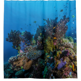 Tropical Fish Great Barrier Reef Coral Sea Gift