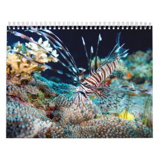 Tropical Fish Great Barrier Reef Coral Sea Gift Calendar