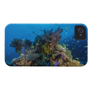 Tropical Fish Great Barrier Reef Coral Sea iPhone 4 Cases