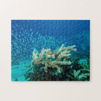 Tropical Fish Great Barrier Reef Coral Sea Jigsaw Puzzle