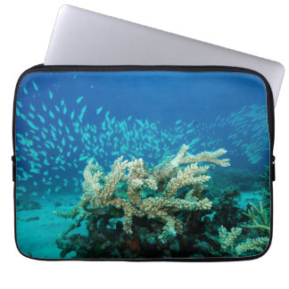 Tropical Fish Great Barrier Reef Coral Sea Laptop Computer Sleeve