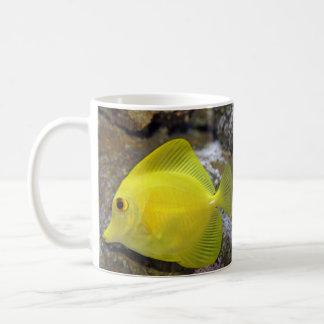 tropical fish mug