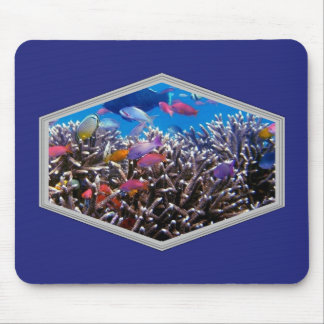 Tropical Fish Scenic Window Mouse Pad