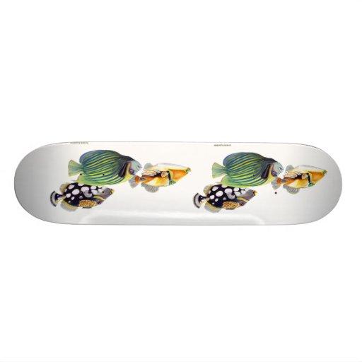 tropical fish skate deck