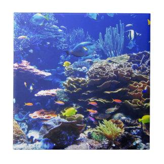 Tropical Fish Tile