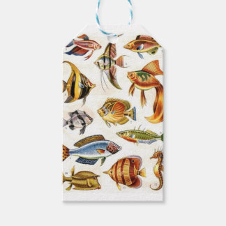 Tropical Fishes Pack Of Gift Tags