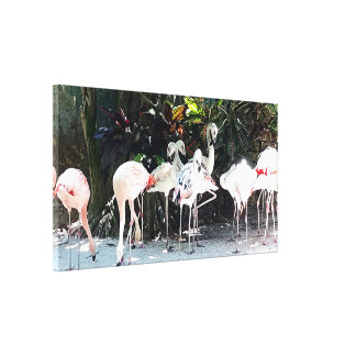 Tropical Flamingos Stretched Canvas Print