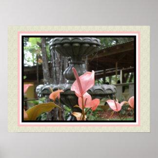 Tropical Flower Anturio Rosado Poster