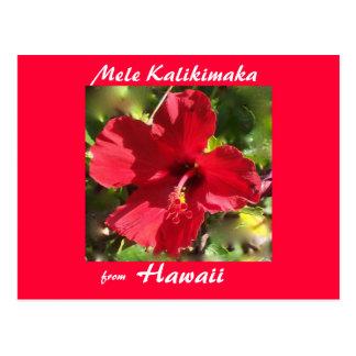 Tropical Flower Christmas photo card
