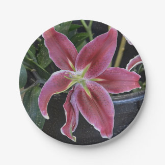 Tropical Flower Paper Plate
