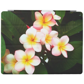 Tropical Frangipani Flower iPad Cover