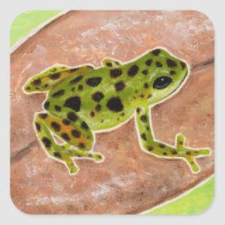 Tropical Frog Square Sticker