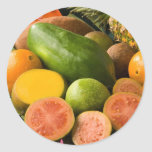 Tropical Fruits Round Stickers