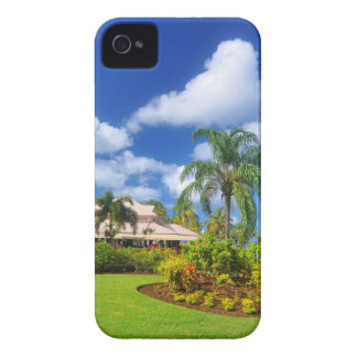 Tropical garden iPhone 4 cover