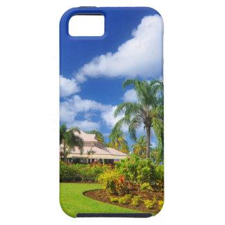 Tropical garden iPhone 5 cases