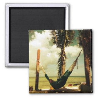 Tropical hammock magnet