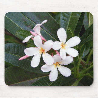 Tropical Hawaii White, Pink, Yellow, Plumeria Mouse Pad