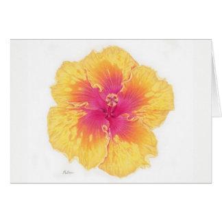 Tropical Hawaiian Hibiscus Flower Greeting Card