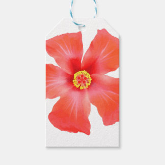 Tropical Hibiscus Flower Vector Gift Tags