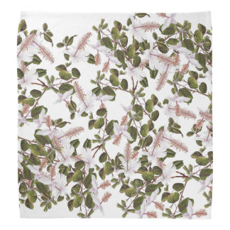 Tropical Hibiscus Flowers Floral Botanical Bandana