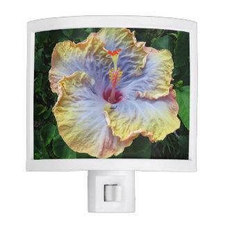 Tropical Hibiscus Night Lite