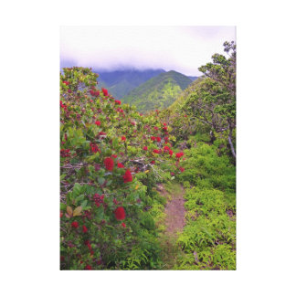 Tropical Hiking Trail Canvas Print