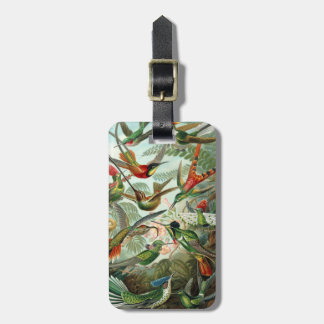 Tropical Humming Bird Luggage Tag