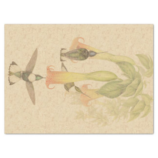 Tropical Hummingbird Birds Floral Tissue Paper