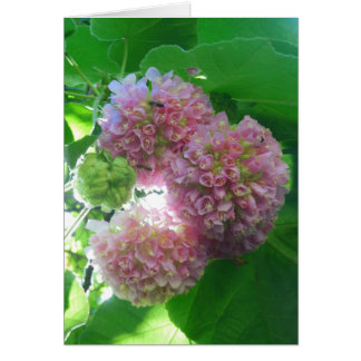 Tropical Hydrangea Tree Card