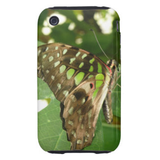 Tropical Iridescent Green Butterfly iPhone Case iPhone 3 Tough Cases