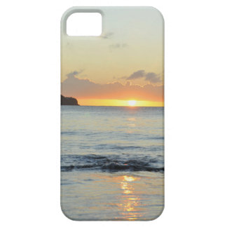 Tropical island in Grenada iPhone 5 Covers