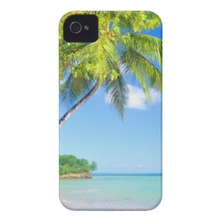 Tropical island in Seychelles Case-Mate iPhone 4 Cases