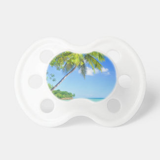 Tropical island in Seychelles Pacifiers