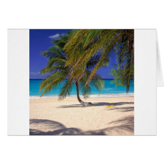 Tropical Island Seven Mile Grand Cayman Card