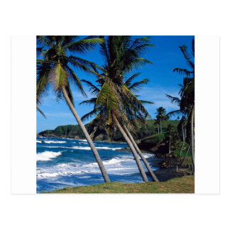 Tropical Island Summer Waves St Lucia Postcard
