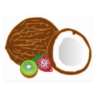 Tropical Kiwi Coconuts Postcard