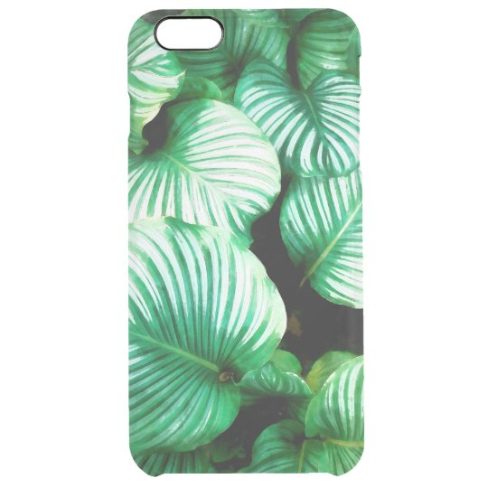 Tropical Leaves Clear iPhone 6 Plus Case