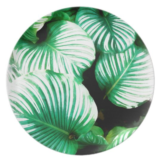 Tropical Leaves Party Plate