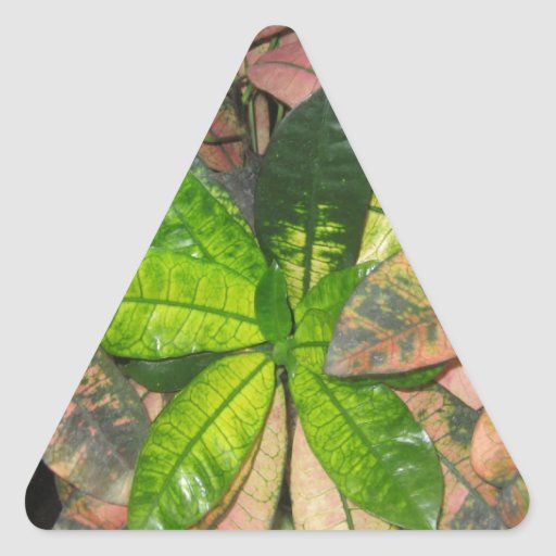Tropical Leaves Triangle Stickers