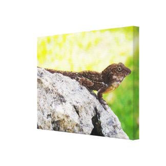 Tropical Lizard Canvas Print